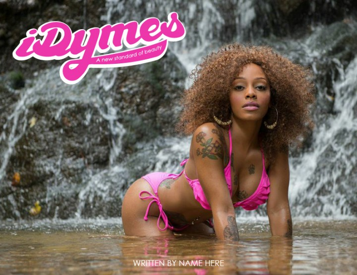 covers_iDYMES-01