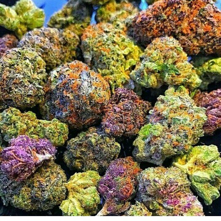 rainbow weed